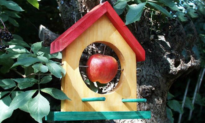 Vogelfutterhaus selber bauen