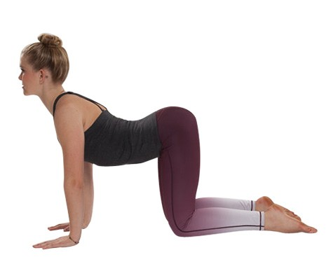 Yoga-Asana Kuh